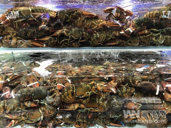 超级物种重庆国泰店1