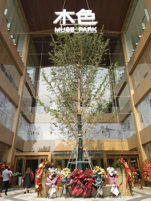 郑州首家室内公园型购物中心——永威木色今天试营业