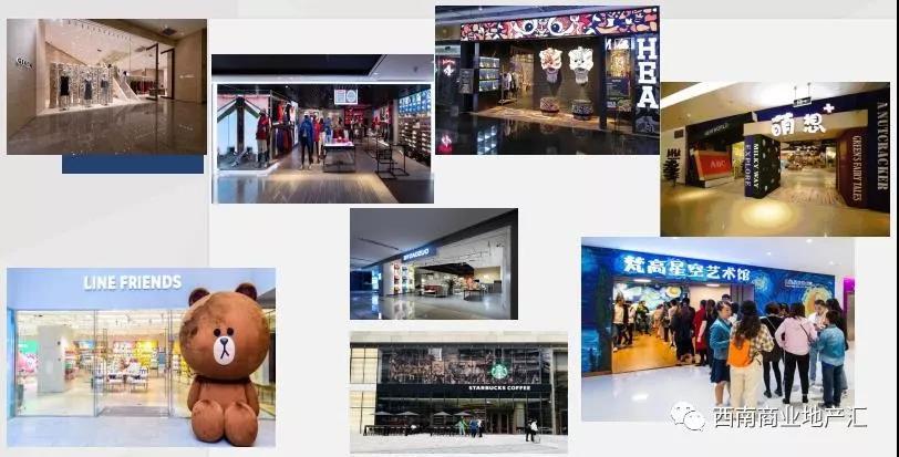 重庆市渝中区首进品牌发展报告6
