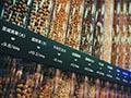 揭秘:三只松鼠投食店日均6千人流量是如何做到的?