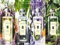 英国奢宠香氛品牌Jo Malone祖•玛珑入驻武商广场