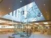 库克携Apple在华疯狂扩张 两年内已新增30家直营店