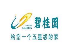 碧桂园在黔南、铜仁获两新项目 实现贵州省全域覆盖