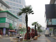 河南首条口碑智慧商业街落户郑州百年德化购物公园