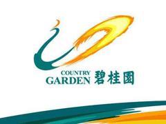碧桂园5000亿销售提速 频频加码产业小镇与长租公寓