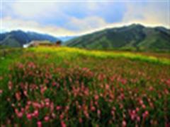 投资将近30亿 乌鲁木齐南山旅游区将展新颜
