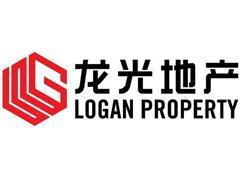 龙光地产委任陈观展为执行董事 主要负责海外投资及运营