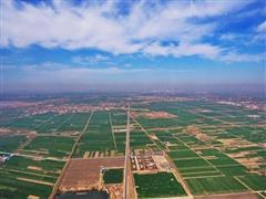 五部门联手助推河北保定白沟新城商贸物流业发展