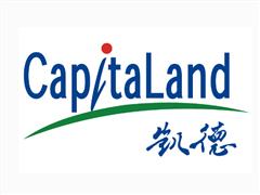 看好中国商业地产前景 罗臻毓详解凯德综合体权衡术