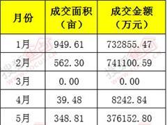 上半年南昌土地市场现5个地王 再迎4大商业综合体