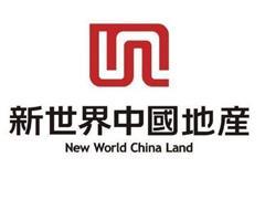 直击业绩会:新世界中国退市一年与郑志刚内地计划