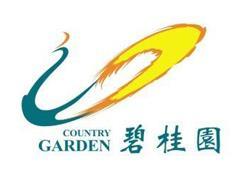 碧桂园签约方糖小镇 将在联合办公、商业综合体等领域展开合作