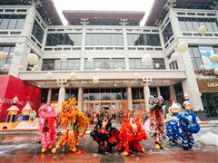 曲江银泰城1月27日全新亮相 竟将全球最美的树屋搬进新商场