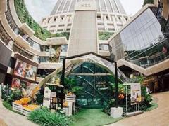 兴业太古汇、K11、万象城等购物中心直接把公园搬进了商场
