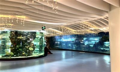雨花客厅E-PARK――打造互联网+智能体验的都市田园购物公园