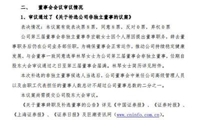红旗连锁:李宏敏辞去董事职务 永辉云商联合创始人林琴接任