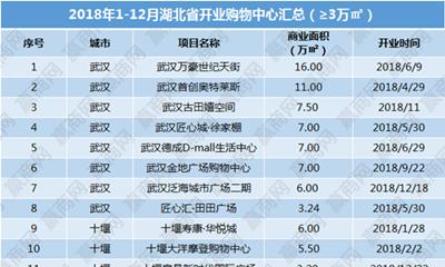 2018年湖北省已开业商业项目21个 商业体量超140万方