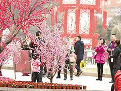 重庆商圈商贸企业7天进账53.03亿 商圈同比增长超10%