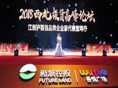 宝鸡吾悦广场2018西北投资高峰论坛圆满举行