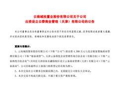 """云南城投、银泰商管等联手设立商管公司""""云泰商业"""" 管理双方旗下商业物业"""