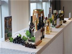 第十届ole国际葡萄酒节开幕 六国酒庄代表齐聚深圳