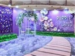 """凯德1818再次升级和创新玩法 举办""""Purple狂欢节"""""""