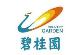 业绩快报:龙湖5月销售175.3亿 碧桂园前5月销售破3000亿