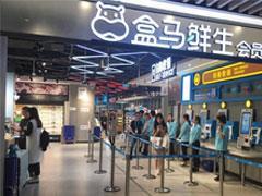 新零售巨头广州布局加速:超级物种首店开业、盒马第二店落户保利中环