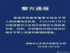 快讯|雅堂小超创始人杨定平涉嫌违法已自首