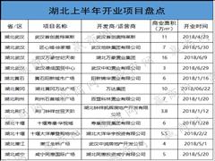 2018年上半年华中开业购物中心35个 体量近250万�O