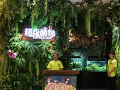 """福州爱琴海招调年""""玩花样"""":动物城、IP展、网红空间跨界而生"""