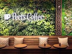 Peets Coffee静安嘉里中心店亮相 热衷于上海开店的还有它