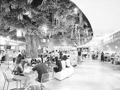 杭州商场加码体验类业态 引进动物园、深海潜水体验馆等