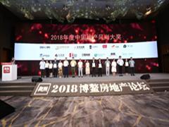 合生商业集团获得2018中国商业模式创新大奖