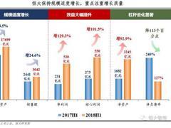 2018年中报业绩靓丽 任泽平揭秘新恒大是怎样炼成的?
