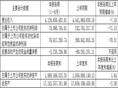 南京中央商场上半年营收下滑明显,四大板块业务齐头并进