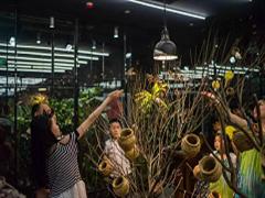 长沙首家室内动物主题公园签约海信广场 预计明年初开业运营