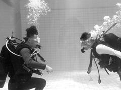 杭州大悦城开出全国首家商场里的潜水馆 这个买卖能赚大钱?