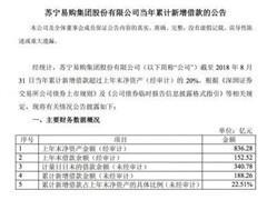 苏宁易购累计新增借款188亿 超上年末净资产20%