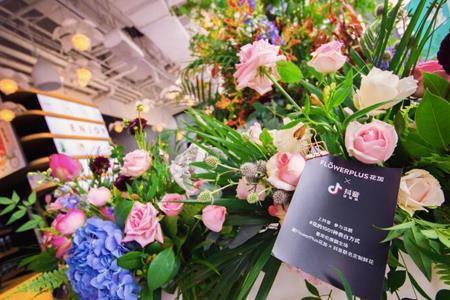 """鲜花电商""""Flowerplus花加""""获3500万元B1轮融资 拟3年开店200家"""