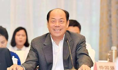 杨国强开年讲话内容流出 计划将重构碧桂园核心业务
