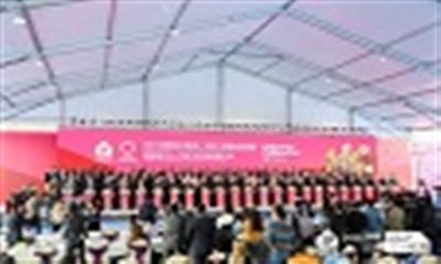 第41届东莞名家具展今日开幕 国际展览中心二期10号馆奠基