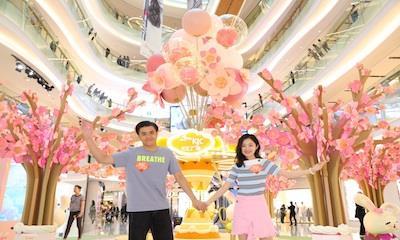 天汇广场igc引进Kate Spade、COACH等品牌 打造粉樱萌兔游乐园