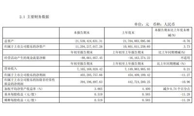 王府井一季度净利降11.27%