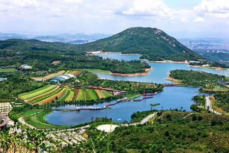 华侨城2019年上半年实现营收177亿元 共18个项目落地