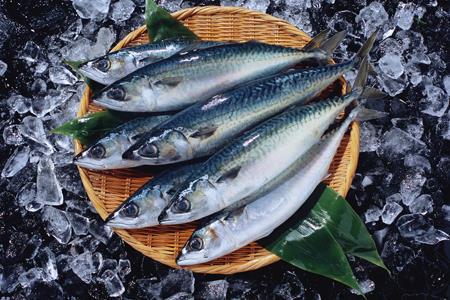 7FRESH升级版空降天津 爱吃海货的天津人有口福了