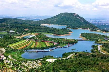 珠海重点产业项目集中签约 华侨城凤凰谷生态旅游项目投资达150亿